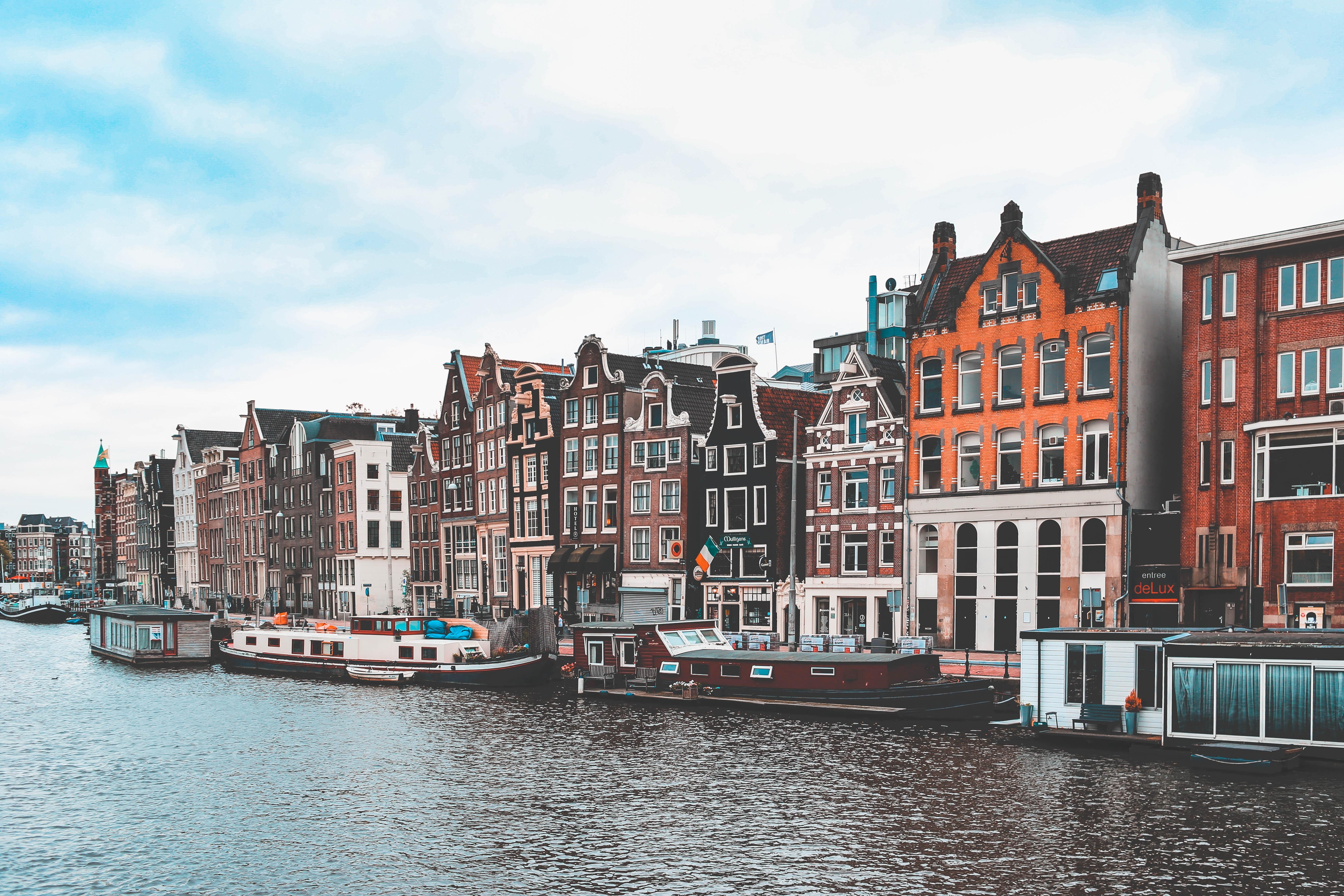università olandesi